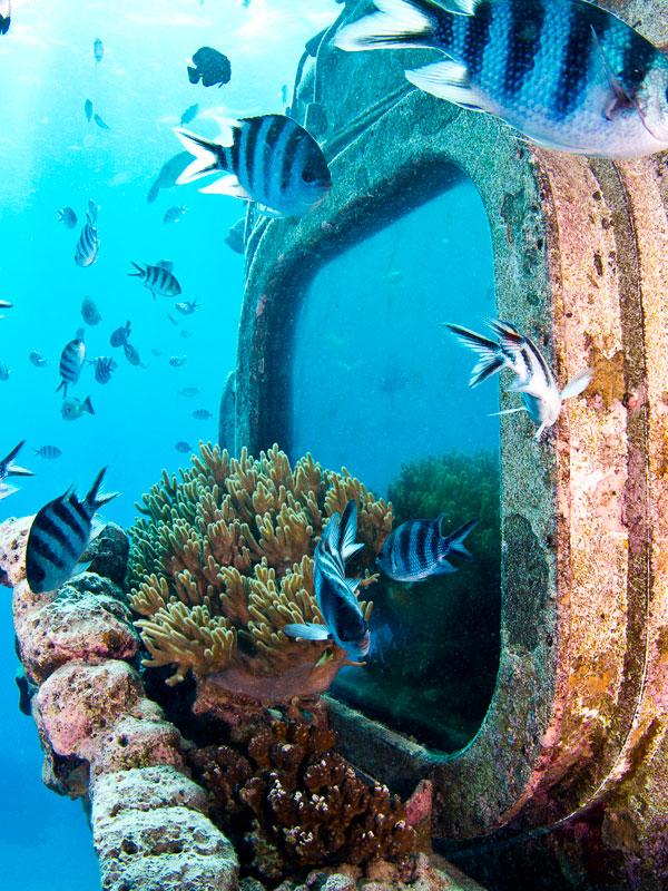 Underwater Observatory Image 1